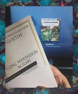 genc-wertherin-acilari