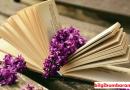 Kitap Okumanın Bilimsel 15 Faydası